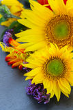 Fall sunflowers Royalty Free Stock Photography