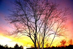 After Fall Sunset Royalty Free Stock Photo