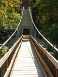 Fall Suspension. Suspension Bridge Stock Photos