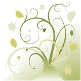 Fall swirls Royalty Free Stock Images
