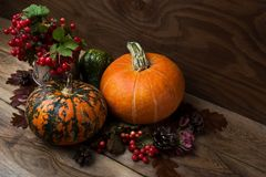 Fall table centerpiece with viburnum and pumpkins royalty free stock photo