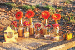 Fall and table decorations in nature Stock Photos