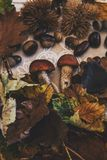 Fall on the table with with autumn fruits royalty free stock photography