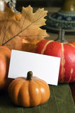 Fall Table Placecard Stock Photography