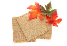 Fall tag background stock images