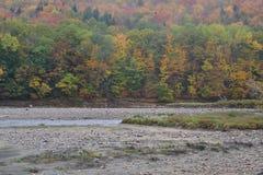 Fall-Tage in Neu-England Stockbilder