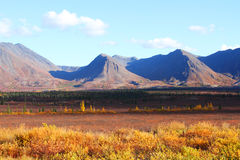 Fall Talkeetna Mountains Stock Photos