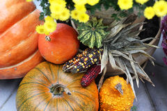 Fall terrace decorations with pumpkin and lot of flowers Royalty Free Stock Photography