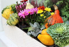Fall terrace decorations with pumpkin Stock Photo
