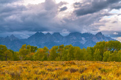 Fall in the Tetons Royalty Free Stock Images