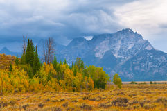 Fall in the Tetons Royalty Free Stock Photos