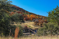 Fall in Texas Royalty Free Stock Photo