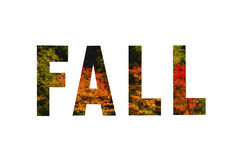 Fall text on colorful maple background. Fall text with colorful maples with colored pencil filter isolated on a white background Royalty Free Stock Photo