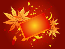 Fall thanks giving card. Fall thanks giving blank card with colorful maple leaves Royalty Free Stock Photos