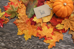 Fall Thanksgiving Background. With leaves Stock Photography