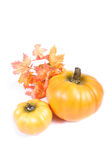 Fall - Thanksgiving Decorations. Fall and Thanksgiving Items stock image