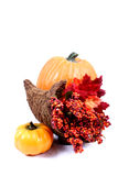Fall - Thanksgiving Decorations. Fall and Thanksgiving Items royalty free stock images
