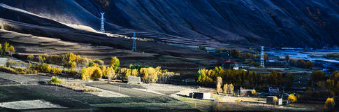 The fall of the Tibetan Plateau. Fall in Tianyuan Geng for the Tibetan people, like golden oceans stock images