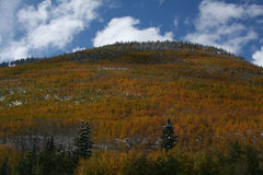 Fall time in Colorado Stock Image