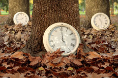 Fall time season clocks leaf forest background Royalty Free Stock Image