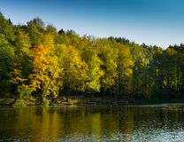 Fall time yellow and orange trees around the pond royalty free stock photography