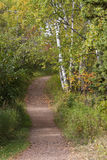 Fall Trail Scenic. A hiking trail in the woods during the autumn season Stock Images