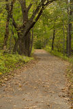 Fall Trail Scenic Royalty Free Stock Photo