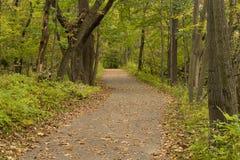 Fall Trail Scenic Stock Photos