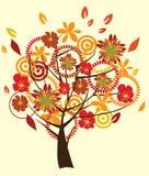 Fall tree Stock Photos