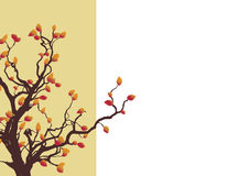 Fall Tree. Side border of an autumn tree with colorful leaves. Lots of copy-space Royalty Free Stock Photos