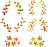 Fall Tree Branches, Tree Branches Vector Stock Photos