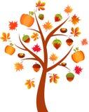 Fall Tree Illustration, Acorn Tree. Fall tree with nuts and pumpkins, autumn tree, orange leaves, yellow leaves, red leaves, foliage, fall leaves, orange Royalty Free Stock Photos