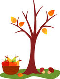 Fall Tree Illustration. Fall tree and fruit basket with red and orange apples and pears, fall leaves, yellow leaves, orange leaves, foliage, green pears, yellow Stock Photos