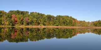 Fall tree reflection on lake in Michigan. Royalty Free Stock Image