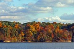 Fall Trees. Across the Lake Stock Photography