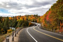 Fall trees in fall in Algonquin Stock Photo
