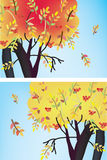 Fall trees banners with leaves Stock Image