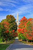 Fall trees and Bennington Monument Royalty Free Stock Image