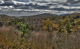 Fall Trees In The Blue Ridge Mountains Stock Images