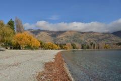 Fall trees beside lake Stock Photo