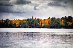 Fall trees with lake royalty free stock photo