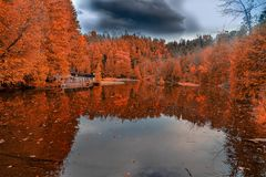 Fall trees with lake Stock Photos