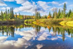Fall trees with lake Royalty Free Stock Photos