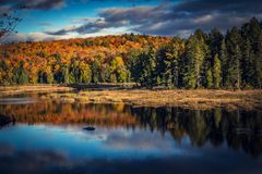 Fall trees with lake Stock Photography