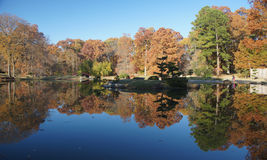 Fall Trees overlooking pond Royalty Free Stock Photos