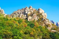 The fall trees peak of Zu  mountain Royalty Free Stock Photo