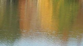 Fall Trees Reflection on Lake Surface. Whether it's Fall Tree reflection,  a Super Moon, Autumn leaves on the bottom of the lake. Leaf  floats by on waves stock footage