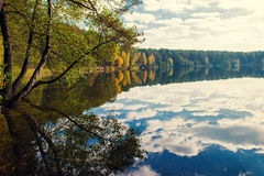 Fall trees reflection Royalty Free Stock Images