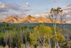 Fall trees on the Sawtooth mountains Stock Photo