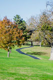 Fall trees with a walking path Stock Photo